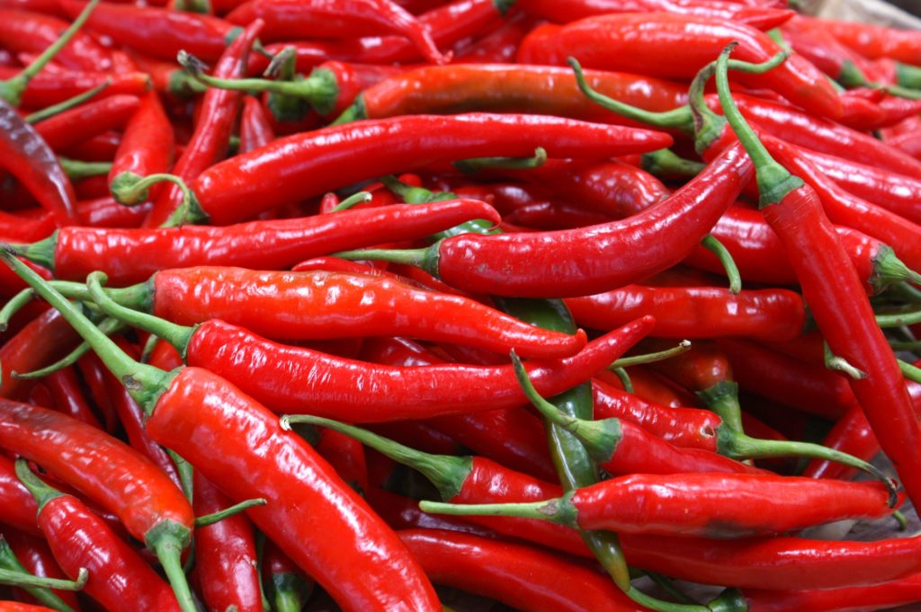 Chili Pepper 39233931920